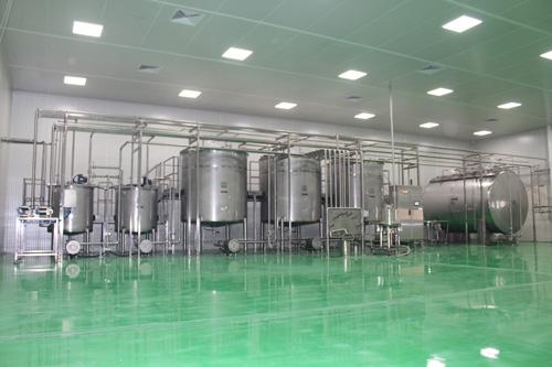 Production d'huile de menthe brute